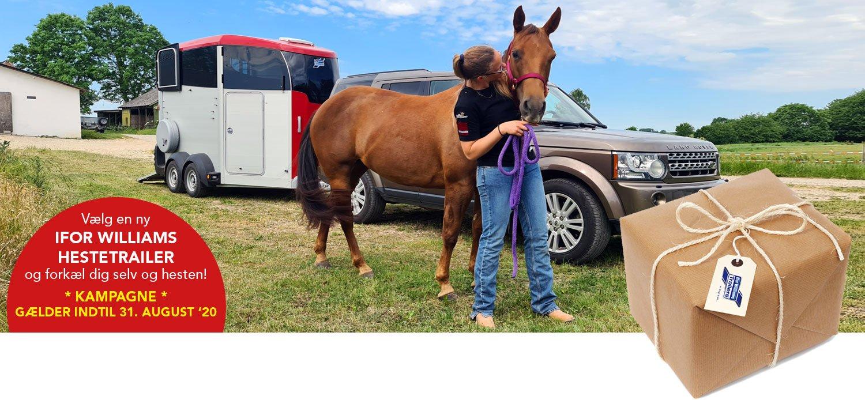 SOMMERPAKKE - Vildt Hestetrailer Tilbud På Ny Ifor Williams Trailer